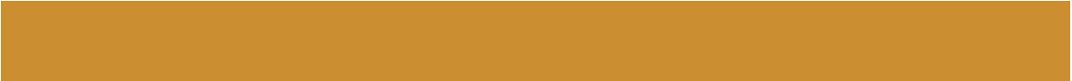 Optiek Leusden Logo